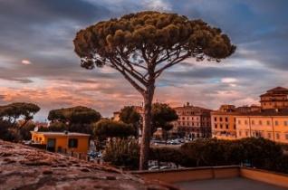 A globális fenntarthatóságról rendeztek szimpóziumot Rómában a PPKE szervezésében