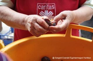 Jótékonysági lekvárfőzést szervezett a Karitász Bordányban – KÉPRIPORT
