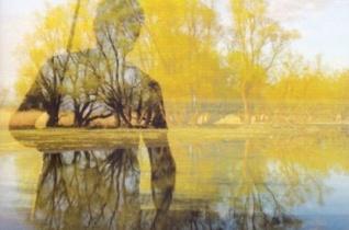 """Matula örök – """"A folyók hátán érkezik a fény"""" című könyvről"""